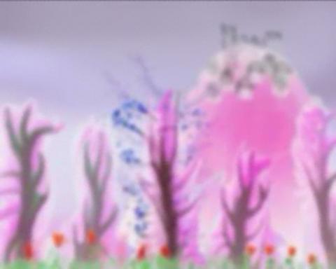 germogli di ciliegio sakura